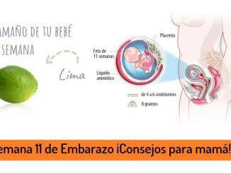 semana 11 de embarazo