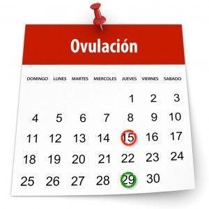 fechero-ovulacion-300x300