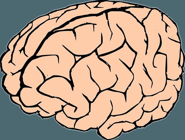 Tratamiento después de un infarto cerebral