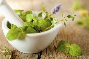 Elimina Los Queloides Con Remedios Naturales