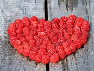 Diez Consejos para Cuidar tu Corazón