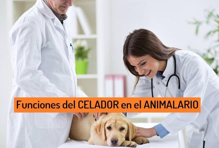 Funciones del CELADOR en el ANIMALARIO