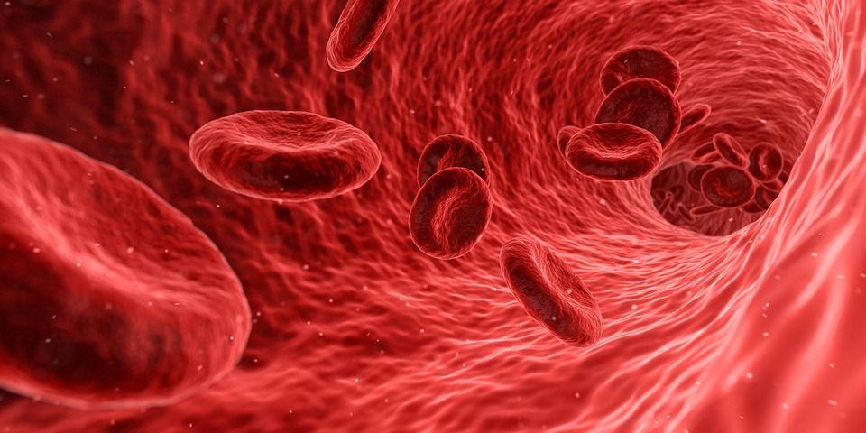 5 Razones para Ser Donante de Sangre