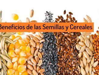 Beneficios Semillas Cereales